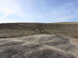 Photo 4: 18 53214 RGE RD 13 Road: Rural Parkland County Rural Land/Vacant Lot for sale : MLS®# E4099595