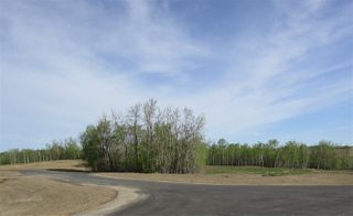 Photo 17: 18 53214 RGE RD 13 Road: Rural Parkland County Rural Land/Vacant Lot for sale : MLS®# E4099595