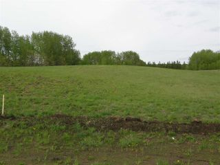 Photo 21: 18 53214 RGE RD 13 Road: Rural Parkland County Rural Land/Vacant Lot for sale : MLS®# E4099595