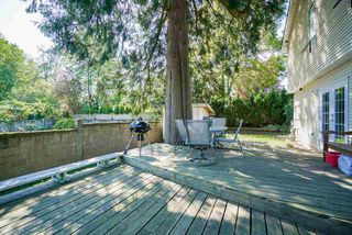Photo 18: 2984 264A Street in Langley: Aldergrove Langley House for sale : MLS®# R2269410