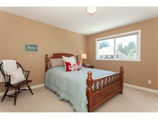 Photo 15: 11167 157A Street in Surrey: Fraser Heights House for sale (North Surrey)  : MLS®# R2284314