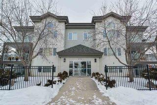 Main Photo: 304 6708 90 Avenue in Edmonton: Zone 18 Condo for sale : MLS®# E4140385