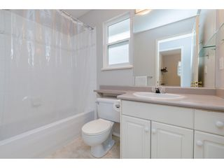 Photo 13: 8771 206 Street in Langley: Walnut Grove House for sale : MLS®# R2347933