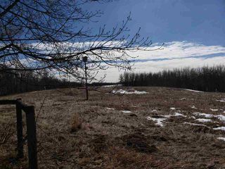 Photo 24: 54315 RANGE ROAD 280: Rural Sturgeon County House for sale : MLS®# E4149335
