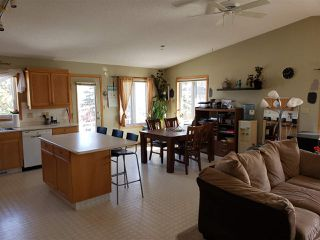 Photo 9: 54315 RANGE ROAD 280: Rural Sturgeon County House for sale : MLS®# E4149335