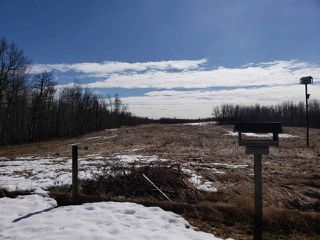 Photo 25: 54315 RANGE ROAD 280: Rural Sturgeon County House for sale : MLS®# E4149335