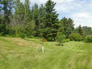 Photo 29: 52414 RGE RD 30: Rural Parkland County House for sale : MLS®# E4155461