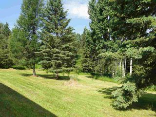 Photo 26: 52414 RGE RD 30: Rural Parkland County House for sale : MLS®# E4155461