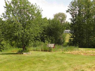 Photo 30: 52414 RGE RD 30: Rural Parkland County House for sale : MLS®# E4155461