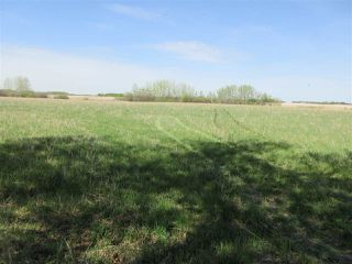Photo 8: RR 243 Hwy 37: Rural Sturgeon County Rural Land/Vacant Lot for sale : MLS®# E4158313
