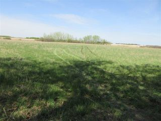 Photo 9: RR 243 Hwy 37: Rural Sturgeon County Rural Land/Vacant Lot for sale : MLS®# E4158313