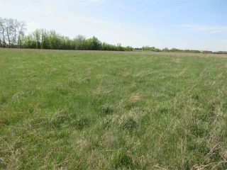 Photo 7: RR 243 Hwy 37: Rural Sturgeon County Rural Land/Vacant Lot for sale : MLS®# E4158313