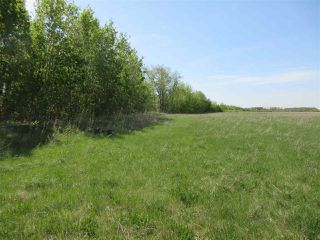 Photo 5: RR 243 Hwy 37: Rural Sturgeon County Rural Land/Vacant Lot for sale : MLS®# E4158313