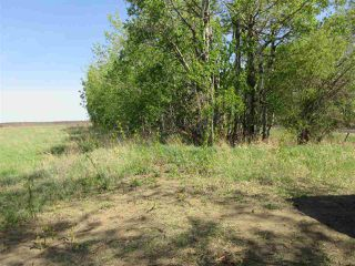 Photo 10: RR 243 Hwy 37: Rural Sturgeon County Rural Land/Vacant Lot for sale : MLS®# E4158313