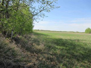 Photo 11: RR 243 Hwy 37: Rural Sturgeon County Rural Land/Vacant Lot for sale : MLS®# E4158313