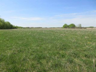 Photo 2: RR 243 Hwy 37: Rural Sturgeon County Rural Land/Vacant Lot for sale : MLS®# E4158313