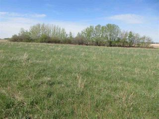 Photo 6: RR 243 Hwy 37: Rural Sturgeon County Rural Land/Vacant Lot for sale : MLS®# E4158313