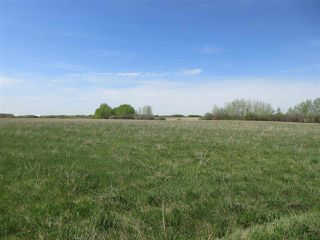 Photo 4: RR 243 Hwy 37: Rural Sturgeon County Rural Land/Vacant Lot for sale : MLS®# E4158313
