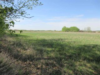 Photo 1: RR 243 Hwy 37: Rural Sturgeon County Rural Land/Vacant Lot for sale : MLS®# E4158313
