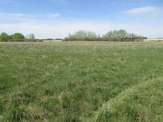 Photo 3: RR 243 Hwy 37: Rural Sturgeon County Rural Land/Vacant Lot for sale : MLS®# E4158313
