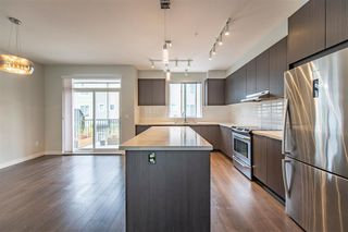 """Photo 7: 51 8138 204 Street in Langley: Willoughby Heights Townhouse for sale in """"ASHBURY & OAK"""" : MLS®# R2386662"""