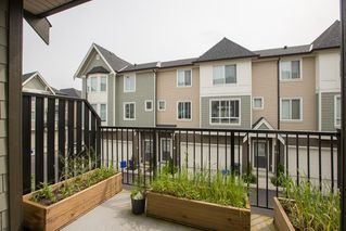 """Photo 15: 51 8138 204 Street in Langley: Willoughby Heights Townhouse for sale in """"ASHBURY & OAK"""" : MLS®# R2386662"""