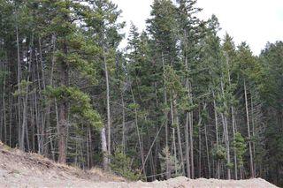 Photo 6: 920 FOX MOUNTAIN Road in Williams Lake: Williams Lake - Rural North Land for sale (Williams Lake (Zone 27))  : MLS®# R2411162