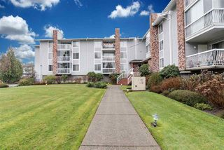 Photo 16: 109 5379 205 Street in Langley: Langley City Condo for sale : MLS®# R2423281