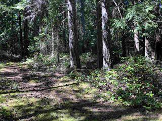 Photo 6: 517 ABBOTT Road: Mayne Island Manufactured Home for sale (Islands-Van. & Gulf)  : MLS®# R2494188