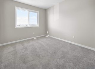 Photo 11: 3404 Erlanger Bend in Edmonton: Zone 57 House for sale : MLS®# E4217374