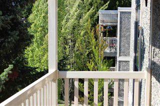 Photo 7: 301 13525 96 Avenue in Surrey: Queen Mary Park Surrey Condo for sale : MLS®# R2518934