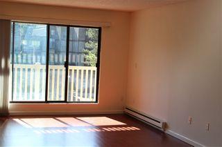 Photo 3: 301 13525 96 Avenue in Surrey: Queen Mary Park Surrey Condo for sale : MLS®# R2518934