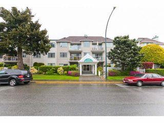 "Photo 1: 201 1140 55TH Street in Tsawwassen: Tsawwassen Central Condo for sale in ""TSAWWASSEN GREEN"" : MLS®# V1118885"