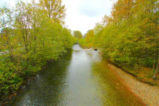 "Photo 6: 203 2288 WELCHER Avenue in Port Coquitlam: Central Pt Coquitlam Condo for sale in ""AMANTI ON WELCHER"" : MLS®# R2011563"