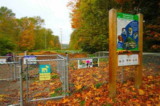 "Photo 10: 203 2288 WELCHER Avenue in Port Coquitlam: Central Pt Coquitlam Condo for sale in ""AMANTI ON WELCHER"" : MLS®# R2011563"