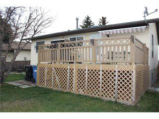 Photo 22: 75 WHITMAN Crescent NE in Calgary: Whitehorn House for sale : MLS®# C4038203
