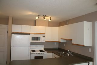 Photo 8: 419 4310 33 Street: Stony Plain Condo for sale : MLS®# E4035510
