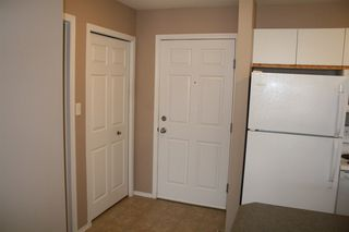 Photo 10: 419 4310 33 Street: Stony Plain Condo for sale : MLS®# E4035510