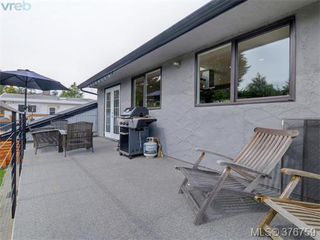 Photo 20: 4419 Chartwell Dr in VICTORIA: SE Gordon Head Single Family Detached for sale (Saanich East)  : MLS®# 756403