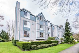 Photo 1: 203 7465 SANDBORNE Avenue in Burnaby: South Slope Condo for sale (Burnaby South)  : MLS®# R2188768