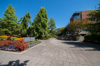 Photo 17: 907 2982 BURLINGTON Drive in Coquitlam: North Coquitlam Condo for sale : MLS®# R2188929