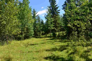 Main Photo: RR 20 Highway 633 (Twp 542): Rural Lac Ste. Anne County Rural Land/Vacant Lot for sale : MLS®# E4077339