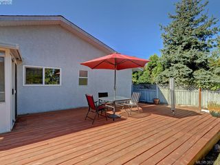 Photo 17: 1216 Loenholm Rd in VICTORIA: SW Layritz House for sale (Saanich West)  : MLS®# 769227