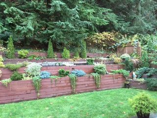 """Photo 4: 1232 BLUFF Drive in Coquitlam: River Springs House for sale in """"RIVER SPRINGS"""" : MLS®# R2222588"""