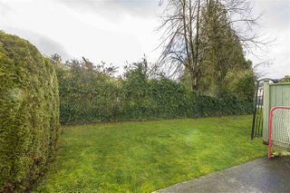 Photo 15: 101 45185 WOLFE ROAD in Chilliwack: Chilliwack W Young-Well Townhouse for sale : MLS®# R2232480