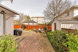 Photo 17: 1559 Bay St in VICTORIA: Vi Fernwood Single Family Detached for sale (Victoria)  : MLS®# 784514