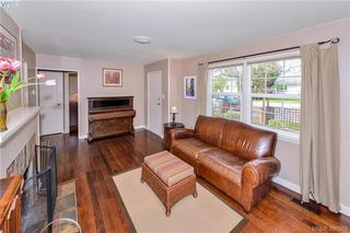 Photo 10: 1559 Bay St in VICTORIA: Vi Fernwood Single Family Detached for sale (Victoria)  : MLS®# 784514