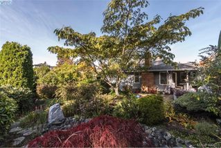 Photo 25: 4999 Del Monte Ave in VICTORIA: SE Cordova Bay Single Family Detached for sale (Saanich East)  : MLS®# 799964