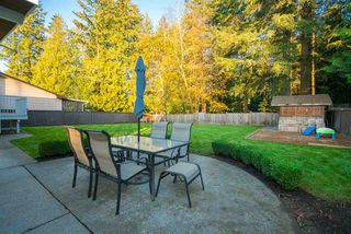Photo 16: 2696 STOCKTON Crescent in Abbotsford: Central Abbotsford House for sale : MLS®# R2321716