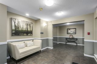 """Photo 3: 206 1200 EASTWOOD Street in Coquitlam: North Coquitlam Condo for sale in """"LAKESIDE TERRACE"""" : MLS®# R2334892"""
